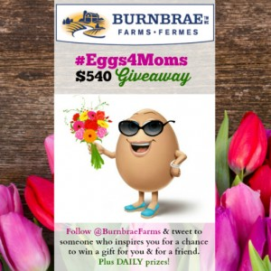 #Eggs4Moms Twitter Giveaway