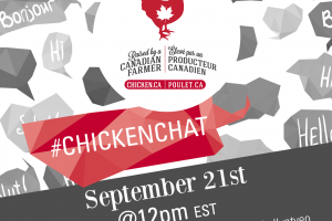 Back to School #ChickenChat September 21st